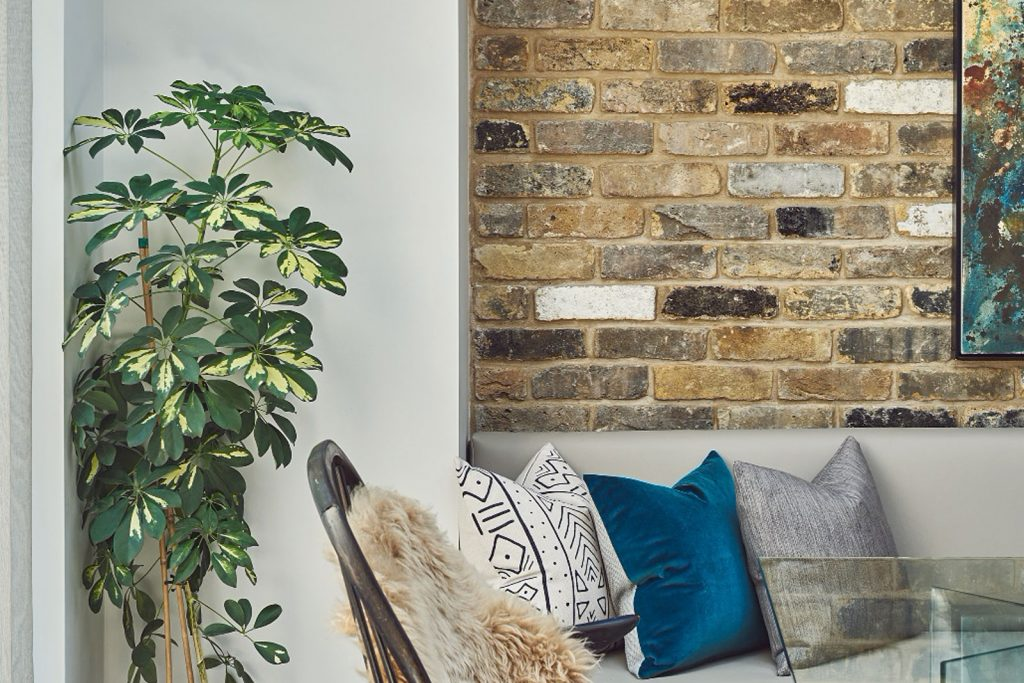 JCD project - using house plants to elevate a space. Adding texture and colour into a scheme